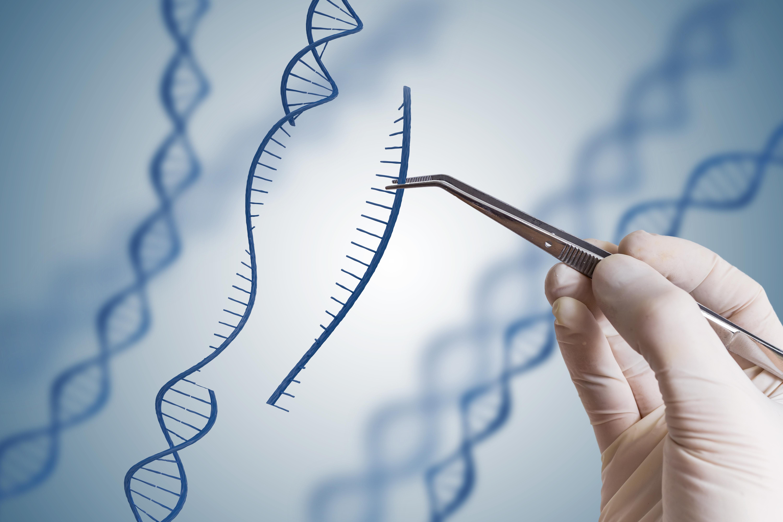 New publication: CRISPR/Cas9-Advancing Orthopoxvirus ...